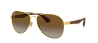 RB 3549 001/T5 GOLD POLARIZED